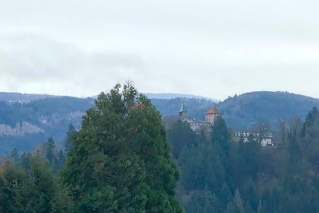 Schlossblick im Herzen des Schwarzwalds