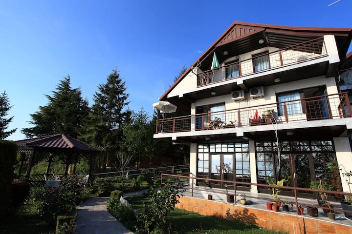 Wonderfull Lagdin by the lake - Ohrid - Villa