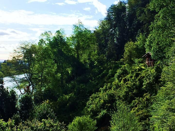 CABAÑA en Río Tolten-Toltén Lodge-Mirador
