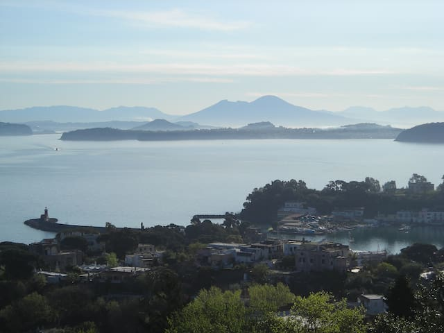 B&B La Cycas di Giannina/Mandarino - Ischia, Naples - Bed & Breakfast