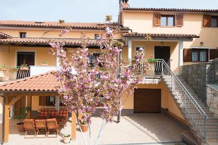 Gino's apartmant - Rovinjsko Selo - Daire