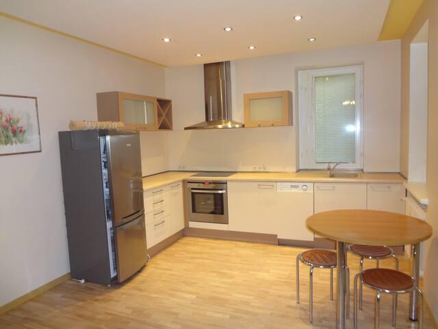 1 bedroom apartment in Baltupio Str - Vilnius - Apartment