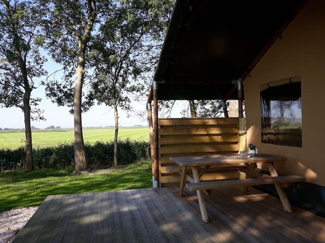 Bijzonder overnachten in een safaritent in Holwerd