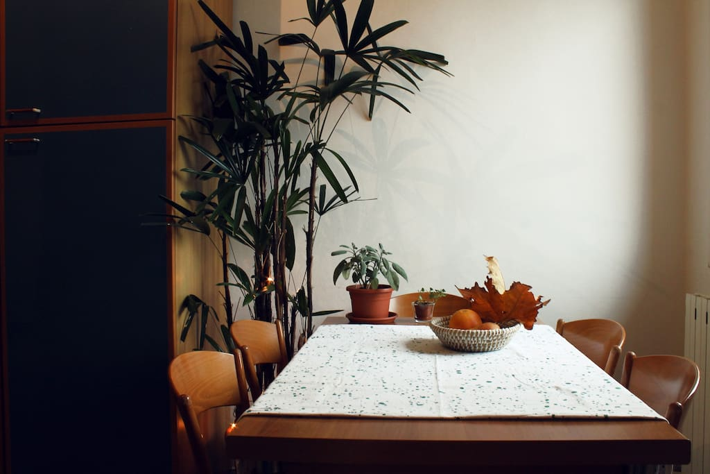 Kitchen table detail with plants