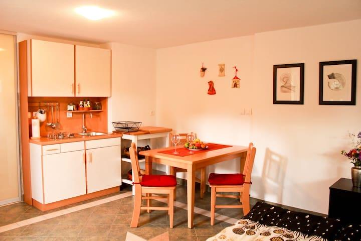 Cozy studio Apartma Sofia - Bled - Huis