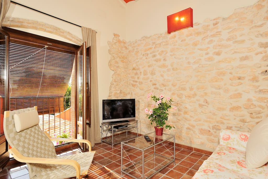 apartment's living room - salón del apartamento