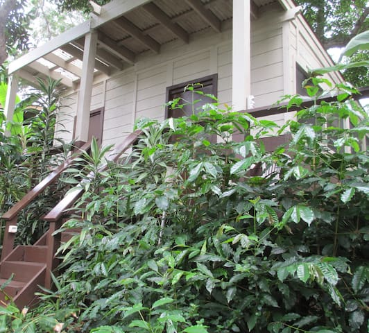 Studio Cottage on Organic Kona Coffee Farm