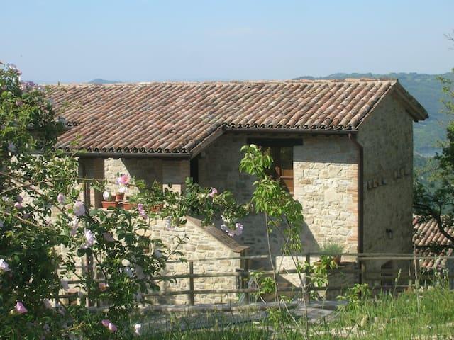 gîte rural Caresto Gubbio Ombrie - Gubbio - Bed & Breakfast