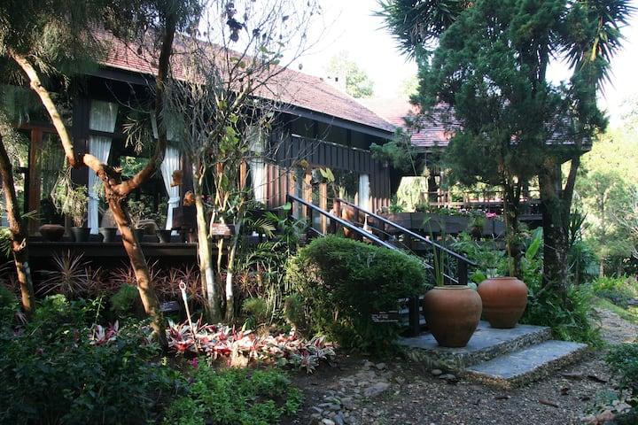Peaceful Botanical Country-House & Artist Studio