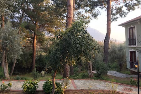 Peaceful escape among the olive trees - Fethiye - Lejlighed