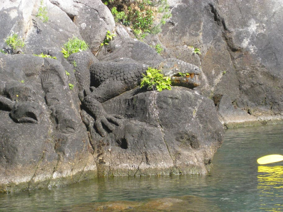 Cruise out to the Rock Carvings on Lake Taupo