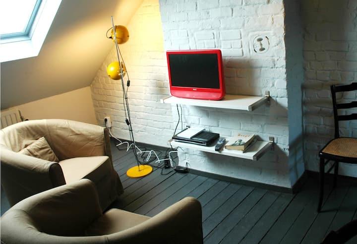 studio ensoleillé sud Bruxelles/quartier vert