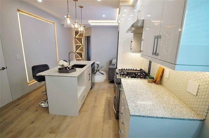 Luxurious 1 bedroom private apartment