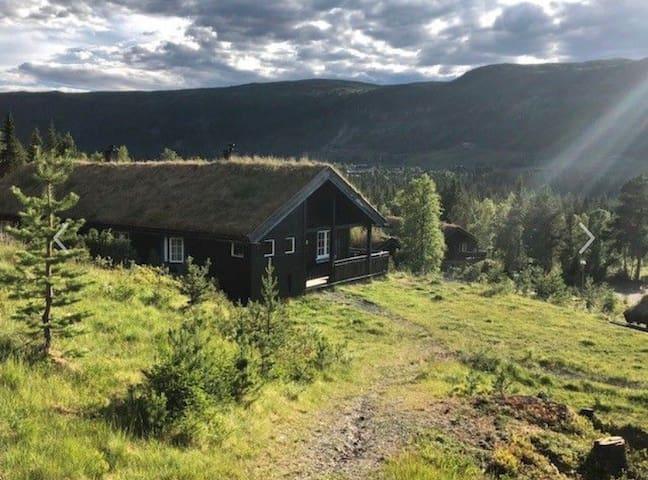 Fin hytte med flott beliggenhet på Gålå!