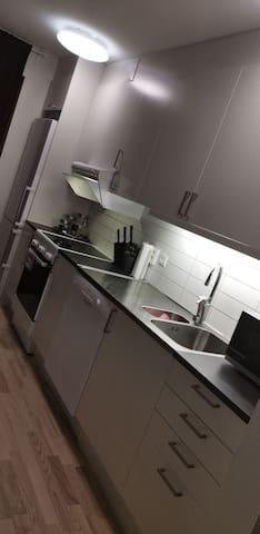 Nyrenoverad lägenhet i centrala Helsingborg.