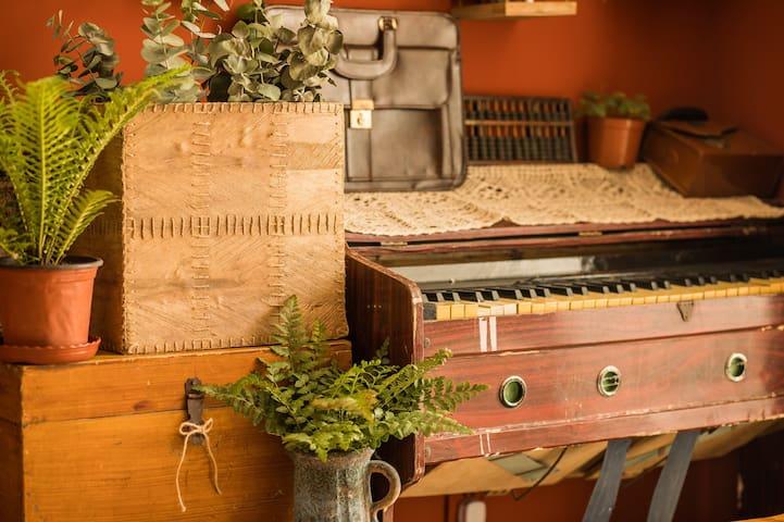 西西de民宿 现代复古风 能做饭 超级温馨 一室一厅,一厨一卫 石家庄高品质民宿 接约拍