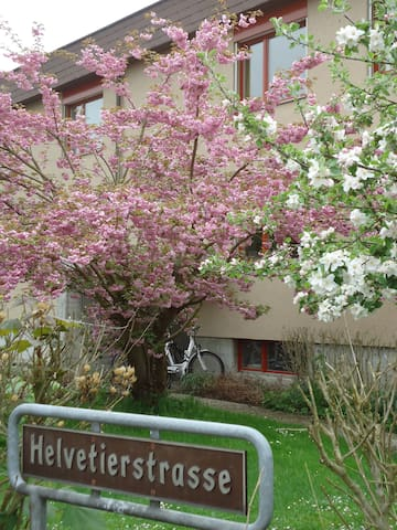 A quiet place - reasonably priced - Therwil - Apartment