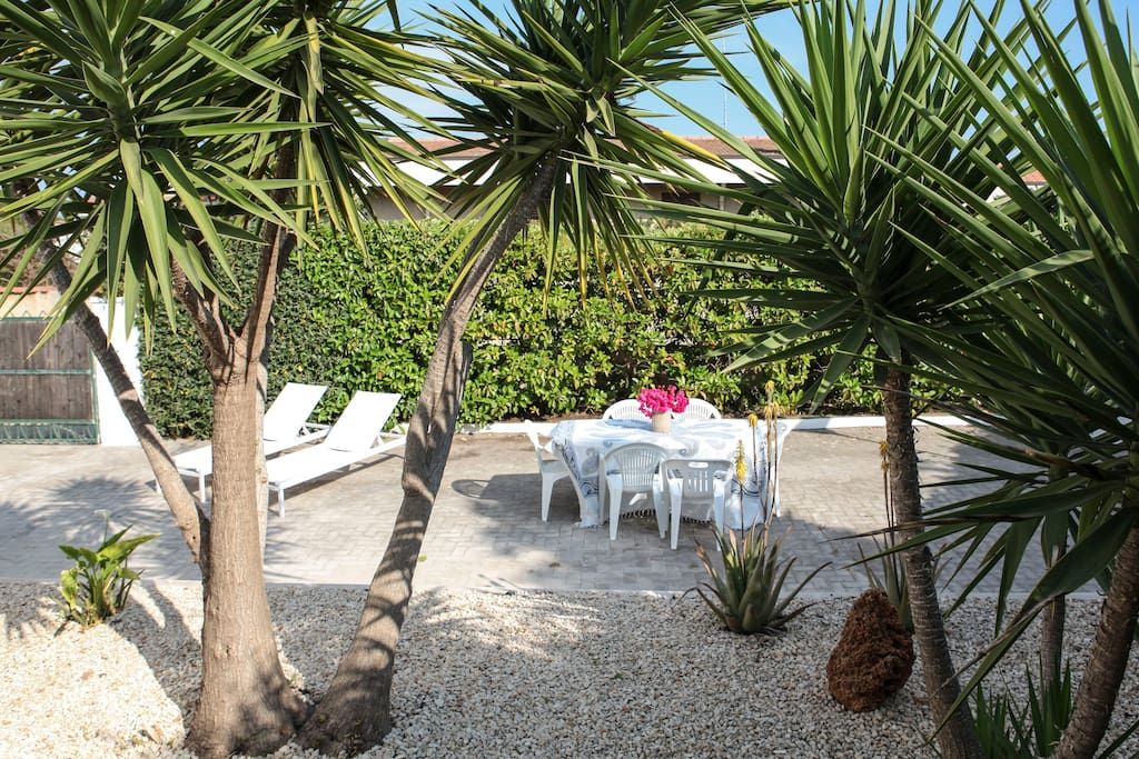 Giardino tropicale con area relax /  Tropical garden with relax area