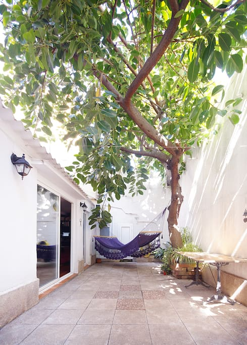 How would be living in a hammock under a ficus tree? Experience it! The patio has a dining table with chairs; making out the living?