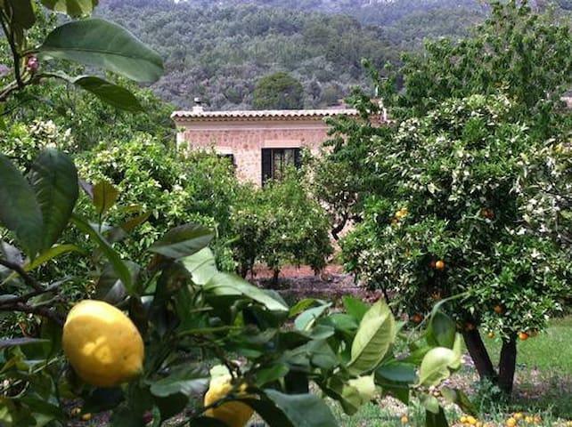 CASA RUSTICA EN FORNALUTX(SOLLER) - Palma de Mallorca