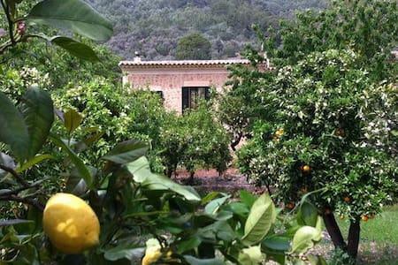 CASA RUSTICA EN FORNALUTX(SOLLER) - Palma de Mallorca - Villa