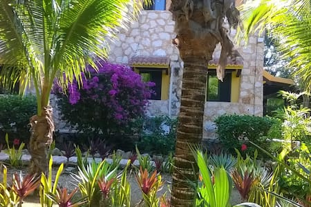 Cozy studios 2 pax in the jungle, Akumal - Cancún - Bed & Breakfast