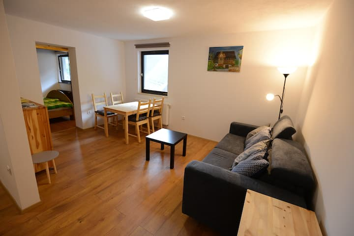 Lovely apartment  in Bohinj