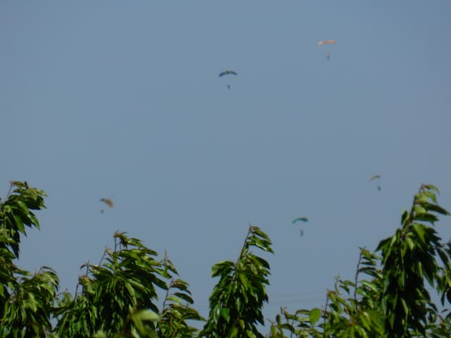 Sky divers over the cherry orchard. View from second floor balcony.