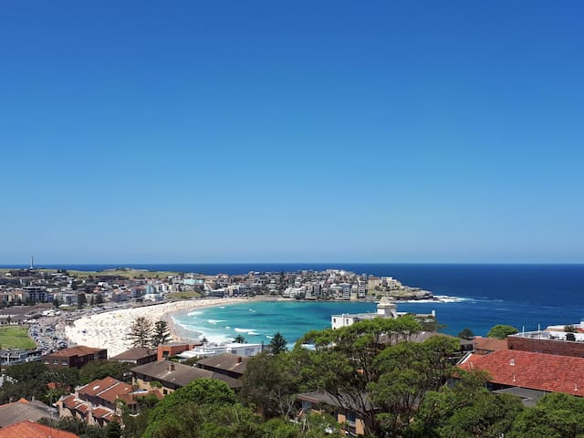 Beautiful Bondi Beach Views & Sunrises