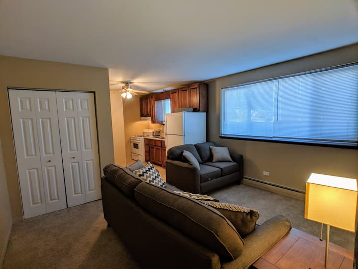 Fully Furnished and Updated 1 Bedroom Apt 910-3