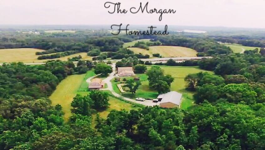 Morgan's Homestead - Heart of VA!