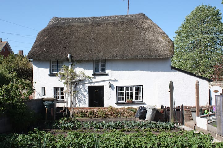 Charming Thatched Detached Cottage - Woodbury