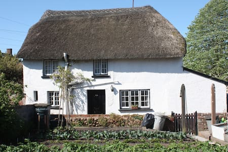 Charming Thatched Detached Cottage - Woodbury - Casa