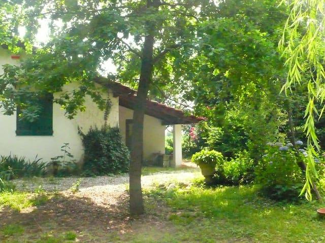 flaviana's house - Martinetto del Rame - House