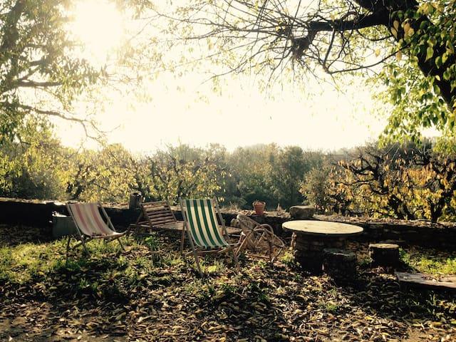 beau mas au milieu des cerisiers !  - Gordes - Bed & Breakfast