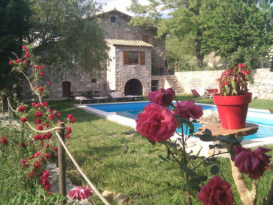 fachada, jardín, piscina, barbacoa,