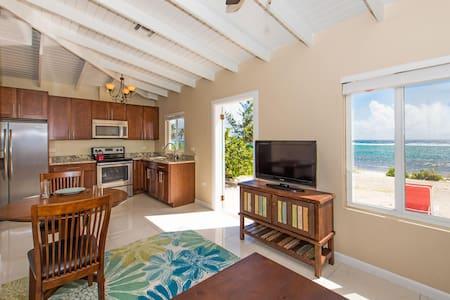 Coco Beach Villas #2 (Ocean Front View) - Bodden Town - 別墅