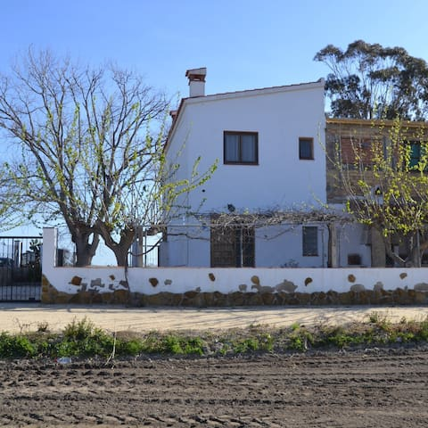 Casa rural enmig del Delta de l'Ebre