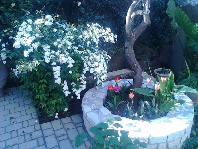 Blue Flowers ,Benitses Corfu