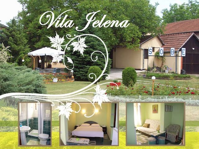 Vila JELENA, Rooms near lake Palic - Palić - Apartment