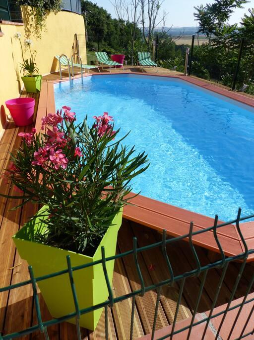 vue sur la piscine l'été