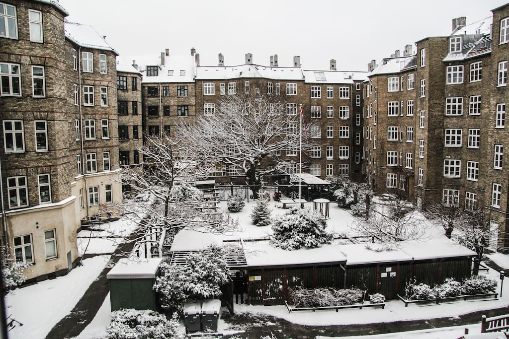 In winter the yard is white