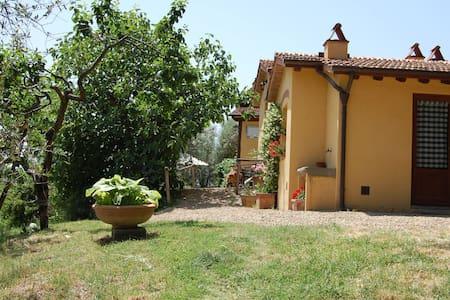 Agriturismo Eustachio - Lavanda, sleeps 4 guests - Pontassieve - Apartmen