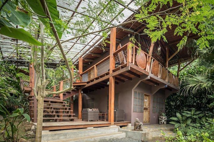 Jungle Cabina At Retreat Center & Free Daily Yoga