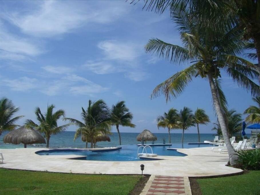 Infinity edge pool and ocean.