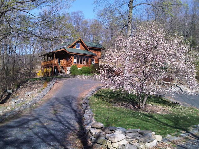 Log Home on 7 mountain acres  - Warwick - House