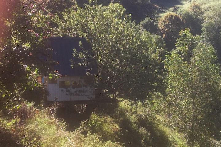 Cabane dans un pommier sur une cour de ferme