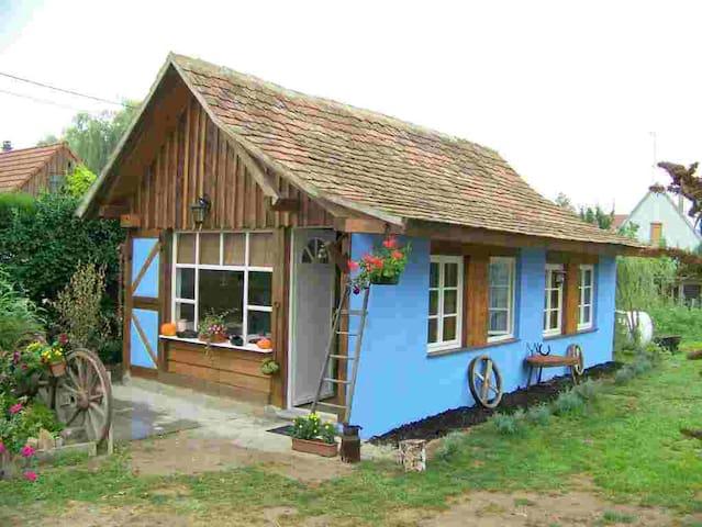 le gîte du poulailler bleu - Muttersholtz - Haus