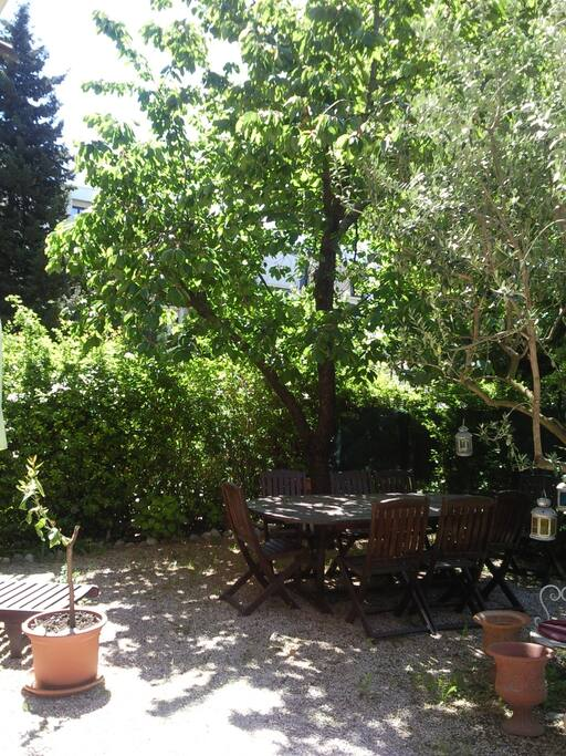 le jardin maitenant