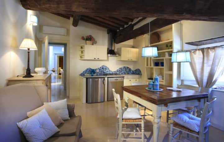 Charming apartment  historical center of Camaiore